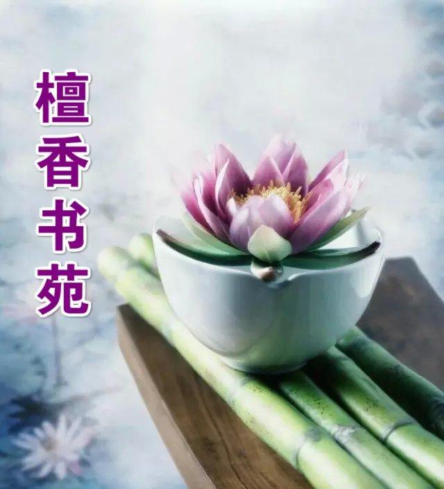 【檀香】雪花飘落在故乡(诗歌)
