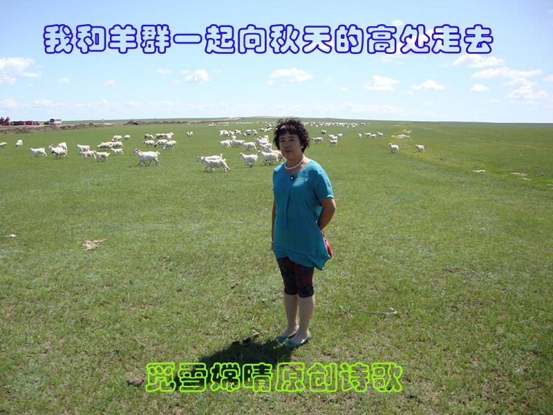 【江南新诗】我和羊群一起向秋天的高处走去